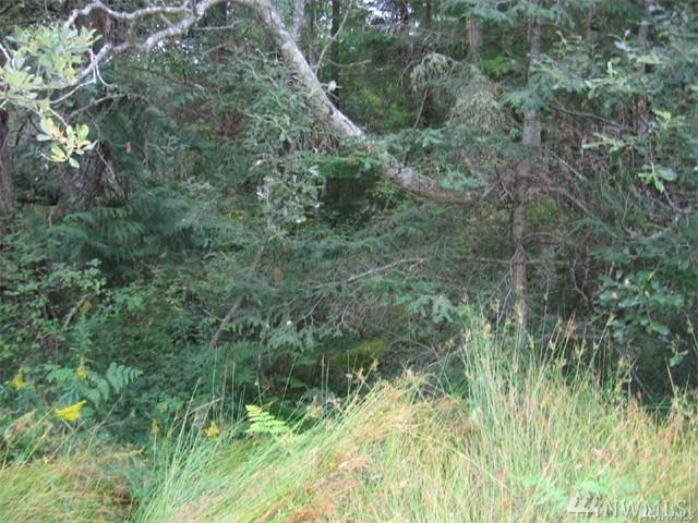 0-Lot 15 Wahl Rd, Freeland, WA 98249 (#1133199) :: Crutcher Dennis - My Puget Sound Homes