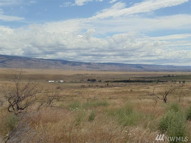 1-Lot B-1 Ellensburg Ranches Rd, Ellensburg, WA 98926 (#1134243) :: Real Estate Solutions Group
