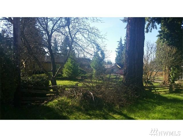 218 160th St S, Spanaway, WA 98387 (#1135264) :: Ben Kinney Real Estate Team