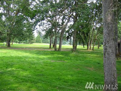 8102 Sapphire Dr SW, Lakewood, WA 98498 (#1136360) :: Ben Kinney Real Estate Team
