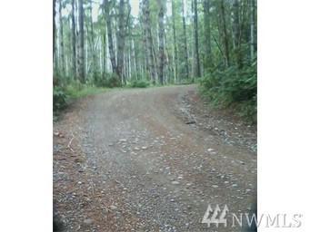 7 Tahuya Valley Road, Tahuya, WA 98588 (#1138090) :: Ben Kinney Real Estate Team