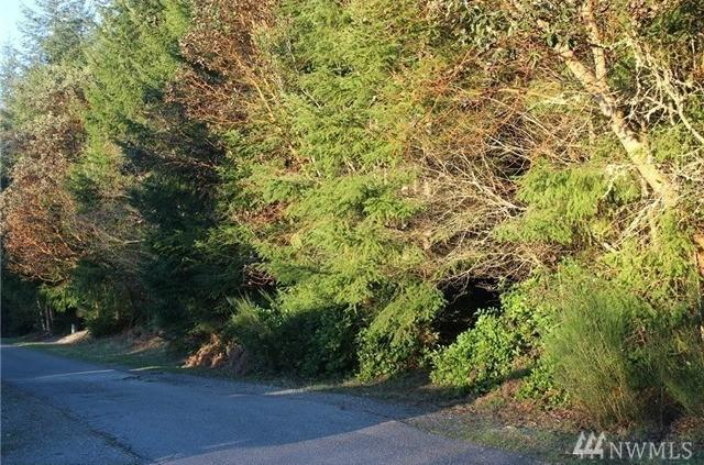 9021 71st Ave NW, Gig Harbor, WA 98332 (#1139168) :: Ben Kinney Real Estate Team