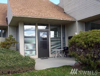1 Nekquelekin 419-H, Manson, WA 98831 (#1140693) :: Ben Kinney Real Estate Team