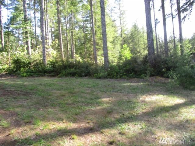 540 NE Collins Lake Dr, Tahuya, WA 98588 (#1140716) :: Ben Kinney Real Estate Team