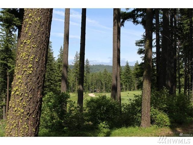 161 Sanctuary Ct, Cle Elum, WA 98922 (#1141790) :: Ben Kinney Real Estate Team