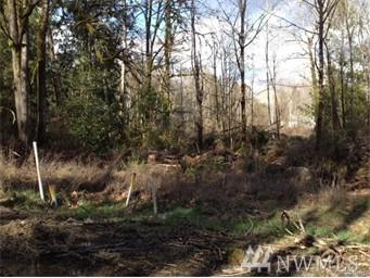 0 Lot 9 Michigan St, Manchester, WA 98353 (#1141969) :: Ben Kinney Real Estate Team