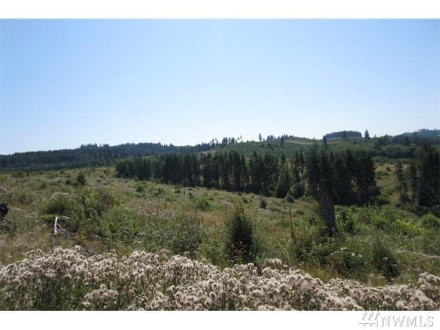 0-Lot 27 Silver Ridge, Castle Rock, WA 98611 (#1142037) :: Ben Kinney Real Estate Team