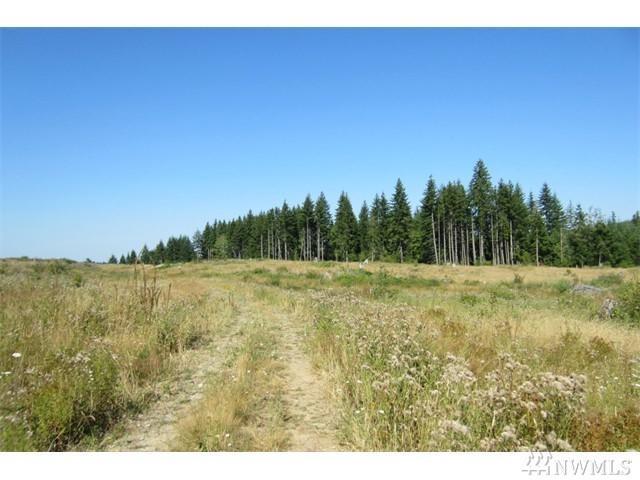 0-Lot 35 Silver Ridge, Castle Rock, WA 98611 (#1142041) :: Ben Kinney Real Estate Team