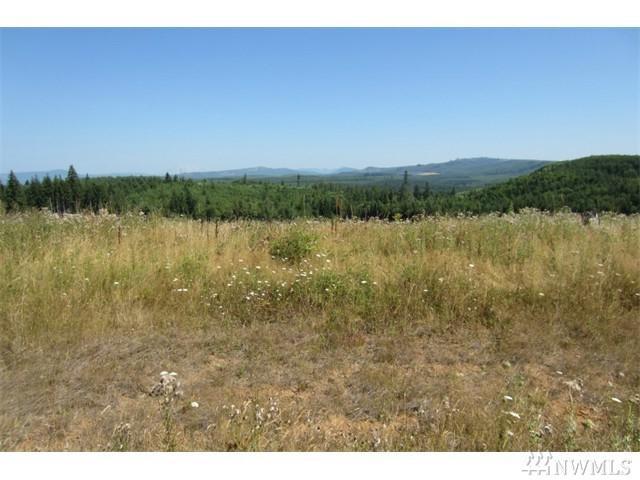 0-Lot 36 Silver Ridge, Castle Rock, WA 98611 (#1142057) :: Ben Kinney Real Estate Team