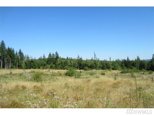 0-Lot 37 Silver Ridge, Castle Rock, WA 98611 (#1142060) :: Ben Kinney Real Estate Team