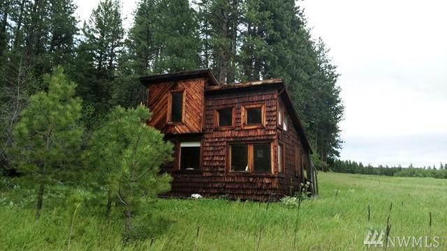 50 Elmer Rd, Twisp, WA 98856 (#1142611) :: Ben Kinney Real Estate Team