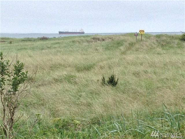 359 Marine View Dr, Ocean Shores, WA 98569 (#1148507) :: Ben Kinney Real Estate Team