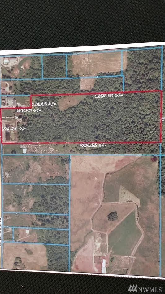 5558 Guide Meridian, Bellingham, WA 98226 (#1148554) :: Ben Kinney Real Estate Team