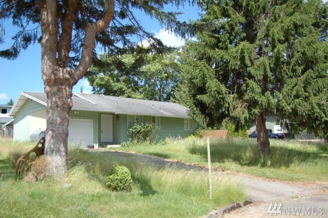 6117 Apollo Dr, Ferndale, WA 98248 (#1148832) :: Ben Kinney Real Estate Team