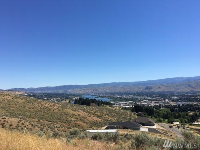 3896 Sky Crest Lane, Wenatchee, WA 98801 (#1149354) :: Ben Kinney Real Estate Team