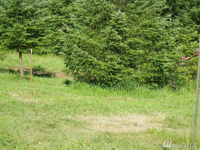 185 Pandora Point Rd, Woodland, WA 98674 (#1149535) :: Ben Kinney Real Estate Team