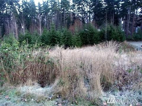 1800-Lot 14 W 12th, Port Angeles, WA 98362 (#1150206) :: Real Estate Solutions Group