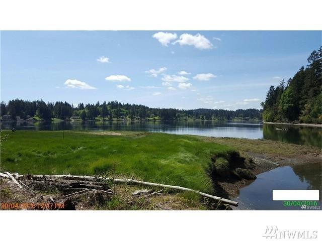 0-xxx E Agate Rd, Shelton, WA 98584 (#1150906) :: Mike & Sandi Nelson Real Estate