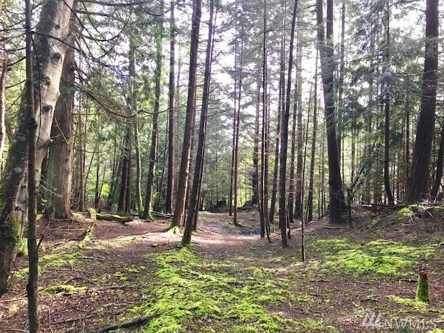 0-xxxxx Palisades Dr, Orcas Island, WA 98245 (#1156257) :: Homes on the Sound