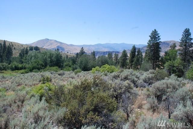 47 Corral Creek Dr, Orondo, WA 98116 (#1160934) :: Ben Kinney Real Estate Team