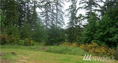 12719 191st Ave Kp N, Gig Harbor, WA 98329 (#1163070) :: Icon Real Estate Group