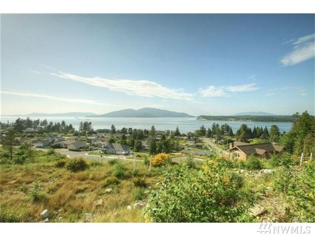 2817 W 3rd St, Anacortes, WA 98221 (#1165063) :: The Craig McKenzie Team