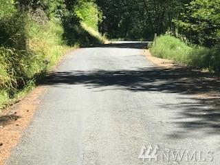 470 Italian Creek Rd, Kalama, WA 98625 (#1165081) :: Ben Kinney Real Estate Team