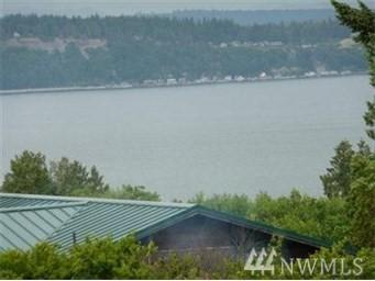 111111 Hinman Dr, Clinton, WA 98236 (#1165755) :: Homes on the Sound