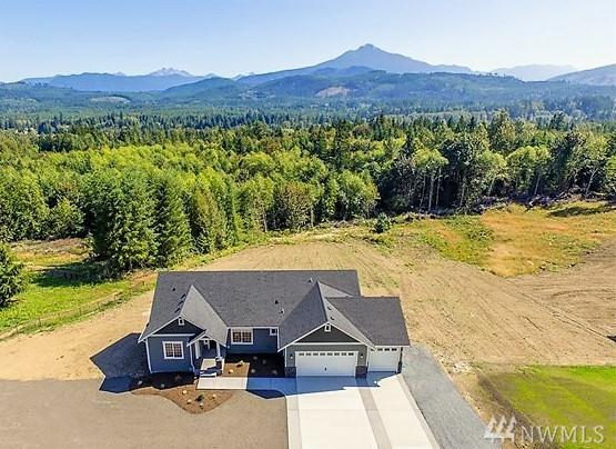 4607 203rd Ave NE, Snohomish, WA 98290 (#1167207) :: Ben Kinney Real Estate Team