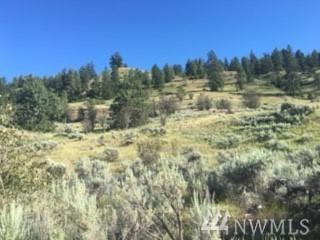 69 Chelan Hills Acre Rd, Orondo, WA 98843 (#1175238) :: Ben Kinney Real Estate Team