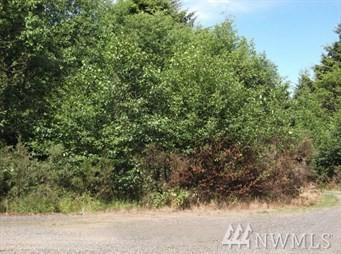 0 Astoria Lane, Aberdeen, WA 98520 (#1176591) :: Ben Kinney Real Estate Team