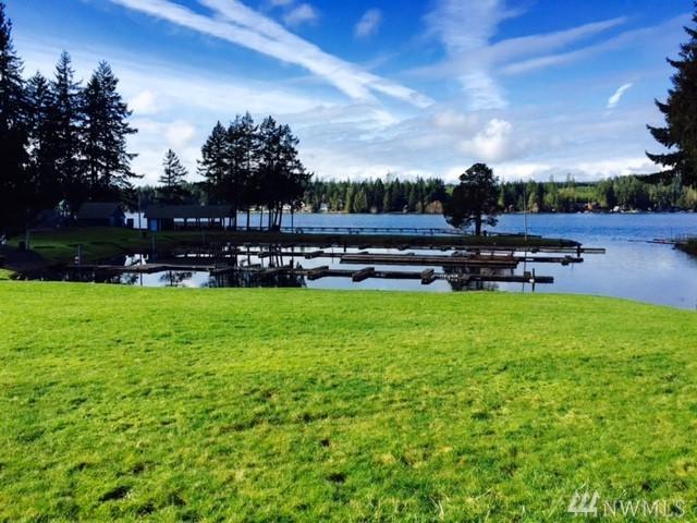 0 E Lakeview Dr, Grapeview, WA 98546 (#1180805) :: Ben Kinney Real Estate Team