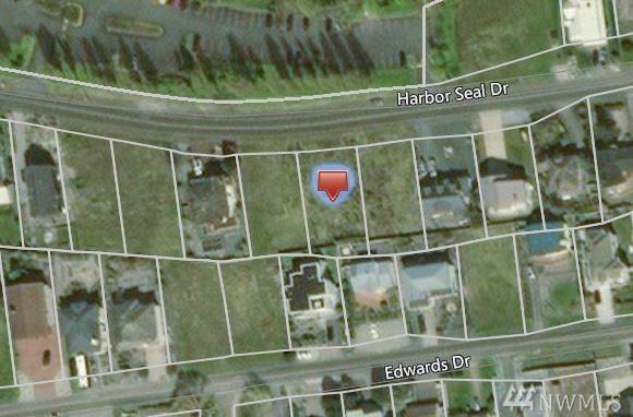 0 Harbor Seal Dr, Point Roberts, WA 98281 (#1181120) :: Ben Kinney Real Estate Team