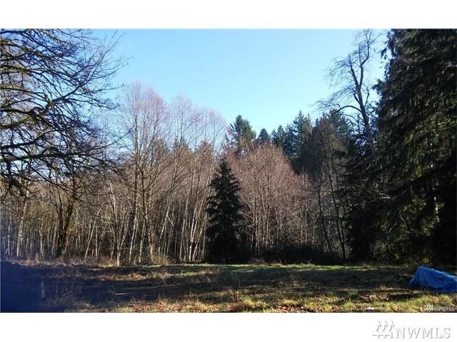 71 E Rauschert Rd, Grapeview, WA 98548 (#1185980) :: Ben Kinney Real Estate Team