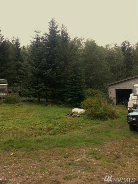 37230 SE 191 St, North Bend, WA 98045 (#1194823) :: Ben Kinney Real Estate Team
