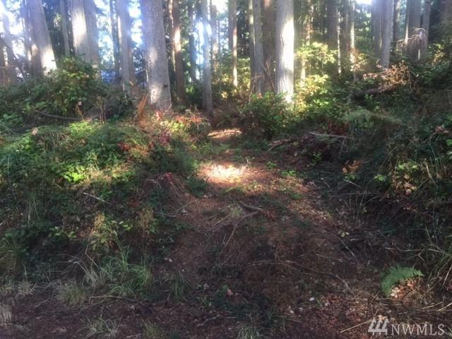 0-Lot 127 Spruce St, Freeland, WA 98249 (#1196524) :: Homes on the Sound