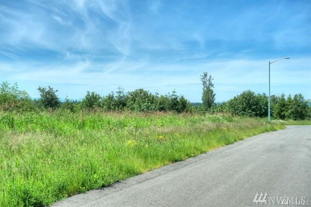 6710 (Lot 11) 167th Place NW, Stanwood, WA 98292 (#1197196) :: Real Estate Solutions Group