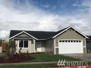 3801 Summersun St, Mount Vernon, WA 98273 (#1197495) :: Ben Kinney Real Estate Team
