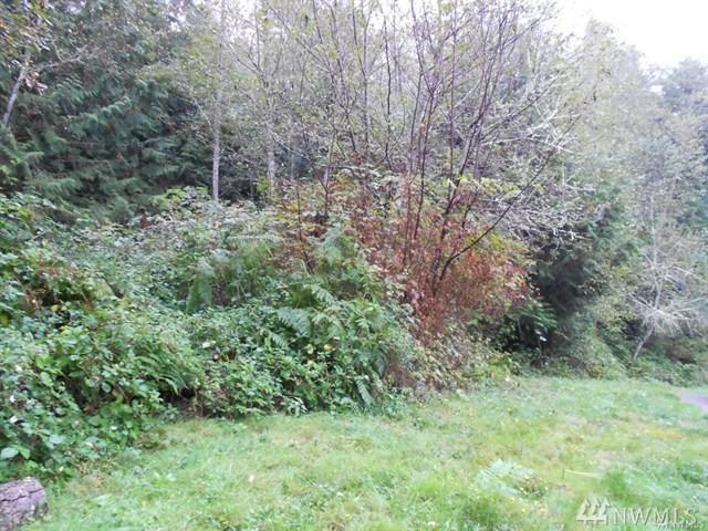 0 Hansville Rd NE, Hansville, WA 98340 (#1198221) :: Better Homes and Gardens Real Estate McKenzie Group