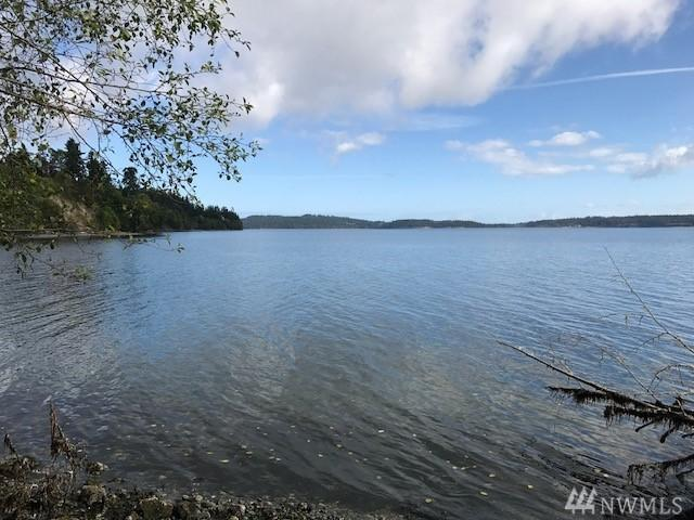 210 Burns Rd, Port Hadlock, WA 98339 (#1198223) :: Homes on the Sound