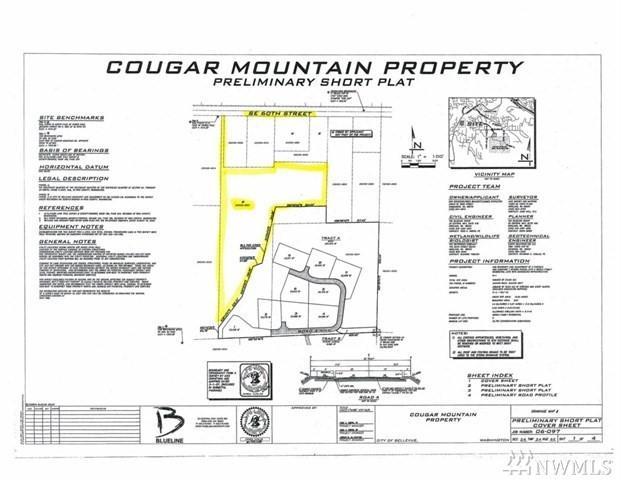 17900 SE 60th St, Bellevue, WA 98006 (#1198859) :: Ben Kinney Real Estate Team