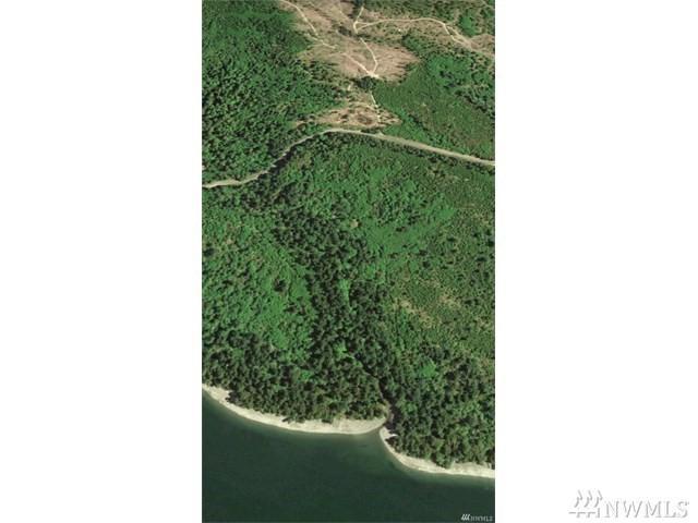 333-xxx E South Island Dr, Shelton, WA 98584 (#1199903) :: Ben Kinney Real Estate Team