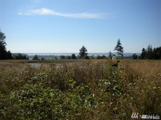 3910 258th St NW #02, Stanwood, WA 98292 (#1200277) :: Ben Kinney Real Estate Team