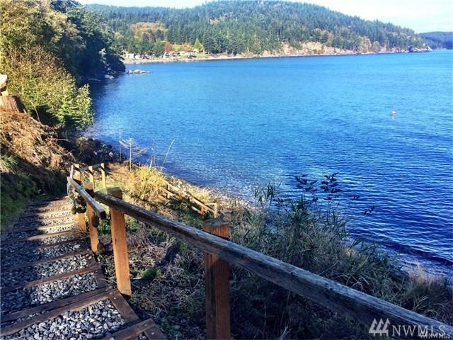 197 Willis Lane, Orcas Island, WA 98279 (#1202079) :: Ben Kinney Real Estate Team