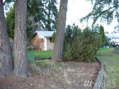 33315 3rd Ave E, Roy, WA 98580 (#1203003) :: Ben Kinney Real Estate Team