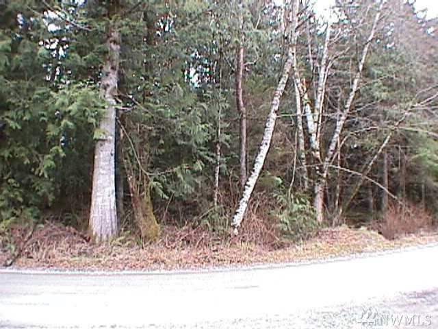 11602 Panorama, Sedro Woolley, WA 98284 (#1203516) :: Homes on the Sound