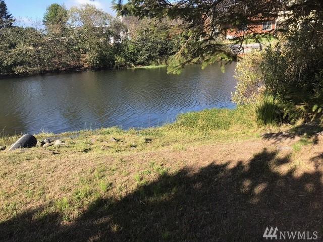 704 325th Place, Ocean Park, WA 98640 (#1204490) :: Ben Kinney Real Estate Team