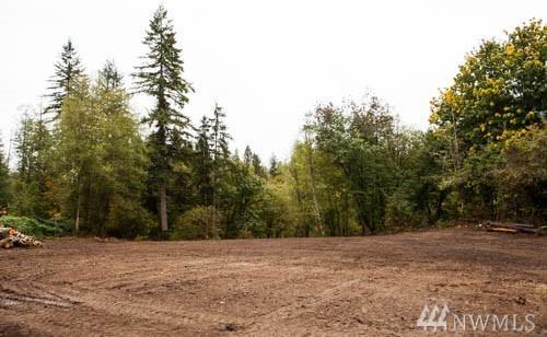 207-XX Dubuque Rd, Snohomish, WA 98290 (#1206987) :: Ben Kinney Real Estate Team