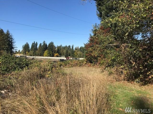 22406 State Route 410 E, Bonney Lake, WA 98391 (#1207024) :: Ben Kinney Real Estate Team
