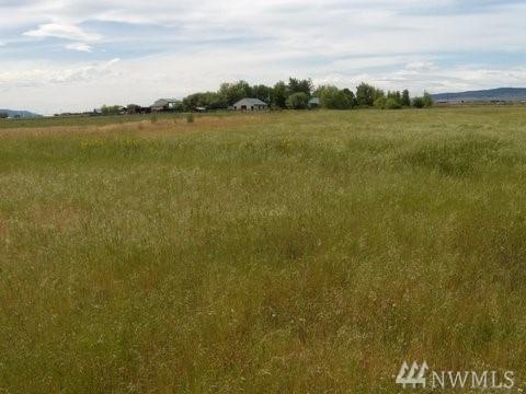 0 Smithson 24 Acres Tract 4 Rd, Ellensburg, WA 98926 (#1207356) :: Ben Kinney Real Estate Team